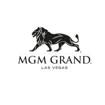"<a href=""https://www.mgmgrand.com/en.html"" target=""_blank"">MGM Grand - View Site</a>"